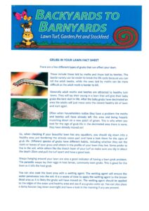 Grubs in your Lawn Fact Sheet