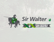 SIr Walter 2 NEW quick links 230x180
