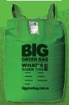 Big Green Bag
