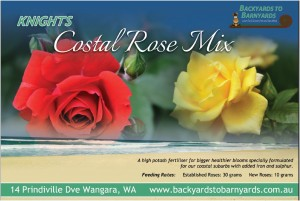 Knights coastal rose mix