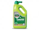lawn grow